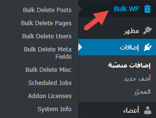 اضافة-Bulk-Delete